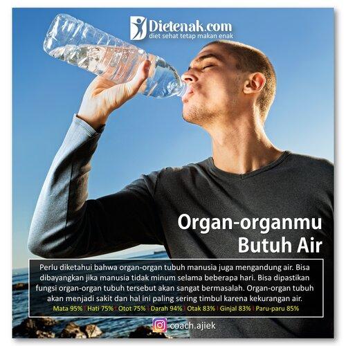 Organ butuh air