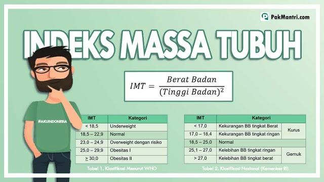index masa tubuh (imt)